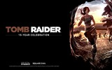 Title:Tomb Raider 15-Year Celebration Game HD Wallpaper 10 Views:4152