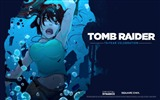 Title:Tomb Raider 15-Year Celebration Game HD Wallpaper 11 Views:4478