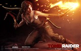 Title:Tomb Raider 15-Year Celebration Game HD Wallpaper 13 Views:4437