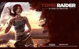 Title:Tomb Raider 15-Year Celebration Game HD Wallpaper 15 Views:4821