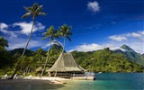 Title:tahiti island-Island travel landscape photography Desktop Wallpapers Views:8762