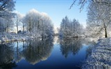 Title:frozen trees reflected in water-winter snow theme wallpaper Views:6719