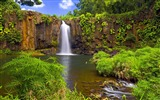 Title:hidden falls-The worlds most beautiful waterfall landscape picture Views:32621