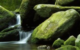 Title:moss rocks-The worlds most beautiful waterfall landscape picture Views:14657