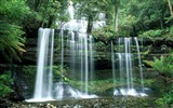 Title:russell falls-The worlds most beautiful waterfall landscape picture Views:21378