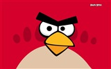 Title:Angry Bird HD Game Wallpaper 01 Views:6241