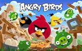 Title:Angry Bird HD Game Wallpaper Views:9174