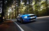 Title:Ford Shelby GT500-Cool Cars Desktop Wallpaper Selection Views:6471