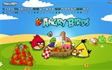 Title:Angry bird the whole of 2012 Calendar Wallpaper Views:4858
