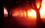 Title:Summer arrives-beautiful landscape wallpaper Views:11855