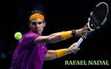 Title:Tennis Sport Desktop Wallpapers Views:12639