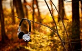 Title:headphone at summer-Music lovers wallpaper Views:5737