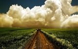 Title:path in the sky-world beautiful scenery wallpaper Views:12737