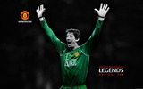 Title:Edwin VanDerSar-Red Legends-Manchester United wallpaper Views:21690
