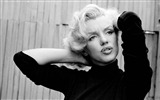 Title:Honor of Marilyn Monroe wallpaper album 10 Views:24401