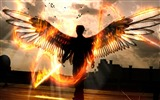 Title:Wings Fiery Edge-Artistic creation design wallpaper Views:4572