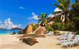 Title:Anse Source dargent-Summer Beach Wallpaper Views:5660