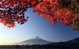 Title:Autumn mount fuji-Japan Landscape Wallpaper Views:58329