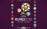 Title:Euro 2012 HD desktop wallpaper Views:13181
