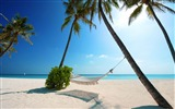 Title:Maldives-Summer Beach Wallpaper Views:13784