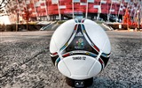 Title:The Official Ball Adidas-Euro 2012 HD desktop wallpaper Views:4199