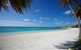 Title:bavaro punta cana-Summer Beach Wallpaper Views:14746