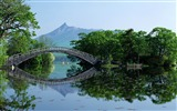 Title:bridge-Japan Landscape Wallpaper Views:15334
