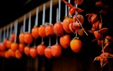 Title:dried persimmons tsumago-Japan Landscape Wallpaper Views:4947