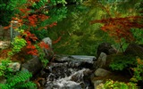 Title:kyoto garden-Japan Landscape Wallpaper Views:23588