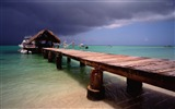Title:pigeon point tobago-Summer Beach Wallpaper Views:6531