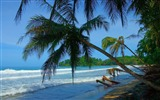 Title:punta uva beach-Summer Beach Wallpaper Views:14125