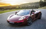 Title:McLaren MP4-12C Spider Auto HD Wallpaper Views:8599