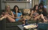 Title:Ted 2012 Movie HD Wallpaper 01 Views:14890