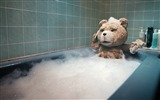 Title:Ted 2012 Movie HD Wallpaper 11 Views:21919