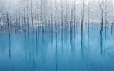 Title:Lake snow blue pond-Mac OS Wallpaper Views:35981