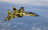 Title:Russian Fighter-aircraft wallpaper Views:14774