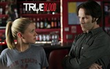 Title:True Blood-American TV series Wallpaper 15 Views:2501