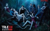 Title:True Blood-American TV series Wallpaper Views:7314