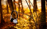 Title:headphone-Summer landscape wallpaper Views:7608