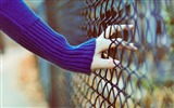 Title:Hand Fence-High Quality wallpaper Views:3998