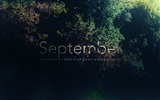 Title:colorful tree-September 2012 calendar wallpaper Views:6968