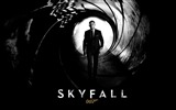 Title:007 Skyfall 2012 Movie HD Desktop Wallpapers Views:22187