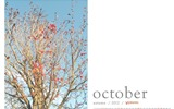 Title:Autumn Red-October 2012 calendar wallpaper Views:4261