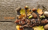 Title:Cheerful Autumn Days-October 2012 calendar wallpaper Views:6898