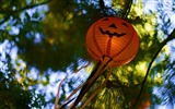 Title:lanterns-2012 Happy Halloween theme Wallpapers Views:3787