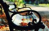 Title:leaves on a bench-Autumn landscape widescreen wallpaper Views:4089