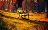 Title:Autumn season-autumn nature photography Wallpapers Views:11851