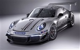 Title:2013 Porsche GT3 991 Cup Auto HD Wallpapers Views:7250