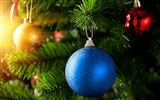 Title:2013 Merry Christmas theme selection Wallpaper Views:8684