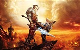 Title:Kingdoms of Amalur Reckoning-2012 Game Featured HD Wallpaper Views:2531